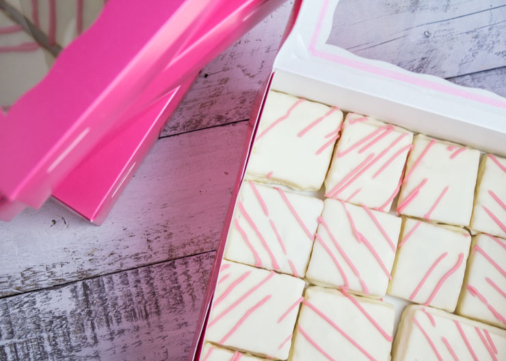 Snack Cakes with Glaze Coating