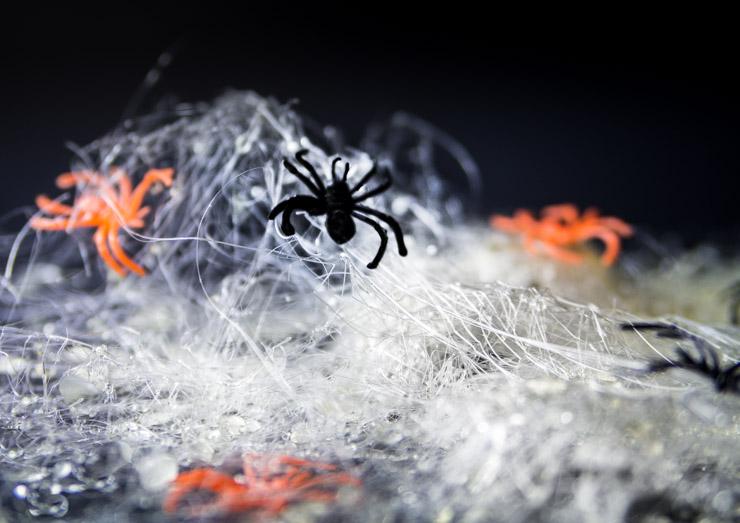 Spun Sugar Spider Webs