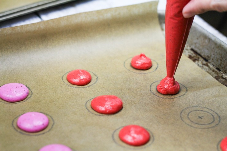 Piping Macarons on Template
