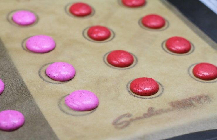 Using the Template to Pipe Macarons