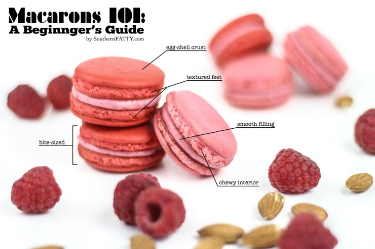 Macarons 101 A Beginner S Guide And Printable Piping Template Southern Fatty