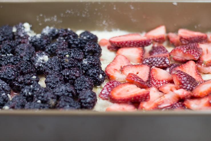 Layering Berries for Bars