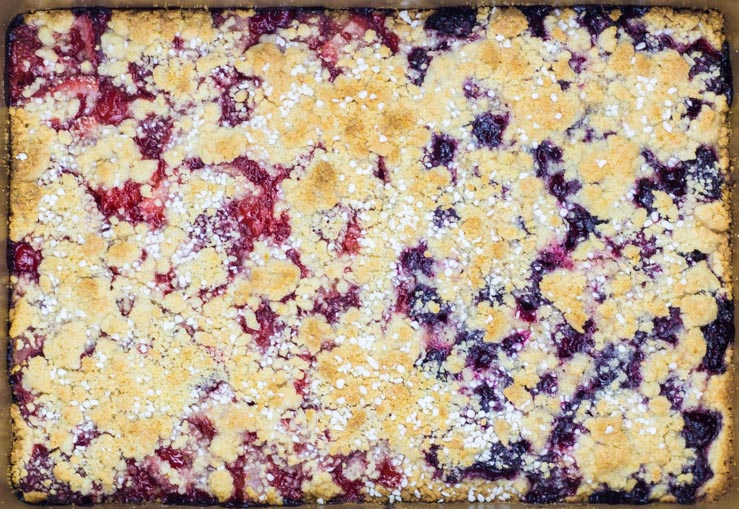 Baked Homemade Berry Bars with Streusel Topping