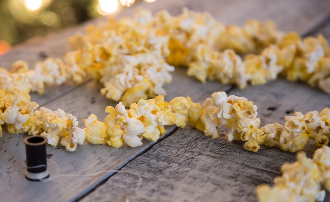 Party Decorations - Popcorn Garland